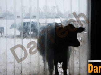 perdea PVC adapost animale